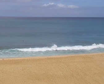Ehukai Beach Live Webcam Oahu Hawaii