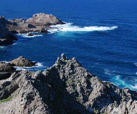 Farallon Islands Live Webcam
