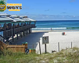 Pineapple Willy's Live Beach Cam, PCB Florida