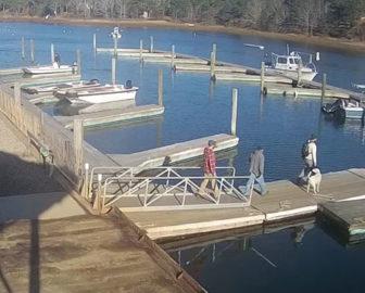Cape Cod Live - Ryder's Cove Boat Yard Live Webcam