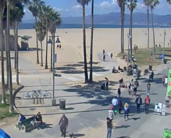 Sidewalk Cafe Webcam in Venice Beach