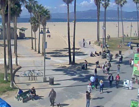 Sidewalk Cafe Webcam in Venice Beach