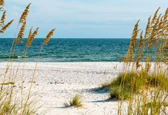 Alabama Beaches Webcams - LiveBeaches.com