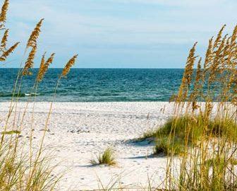 Alabama Beaches Webcams - LiveBeaches.com