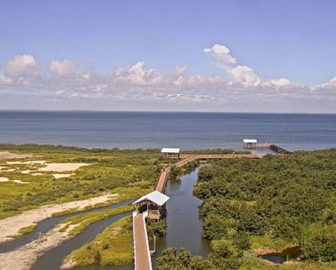 South Padre Island Birding and Nature Center Webcam
