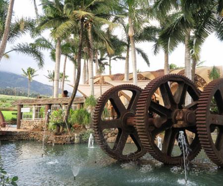 Gear Pond Cam at Maui Tropical Plantation Maui, HI