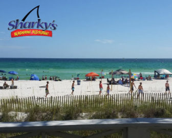 Sharky's Beach Cam in Panama City Beach