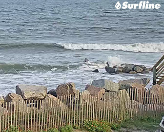Folly Beach, SC Surf Cam by Surfline
