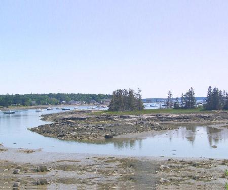 Ann's Point Inn Webcam