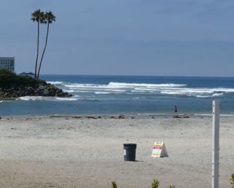Dog Beach, Del Mar North Beach, CA