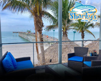Sharky's on the Pier Live Webcam Venice FL
