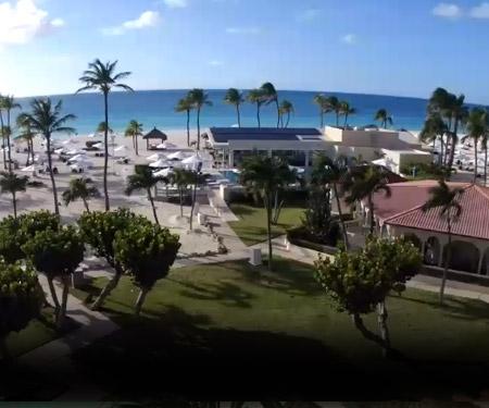Bucuti & Tara Beach Resort Live Cam Aruba Resort Beach Vacation, Visit Caribbean Islands