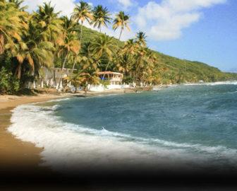 Caribe Playa Beach Hotel Puerto Rico Resort Beach Vacation, Visit Caribbean Islands
