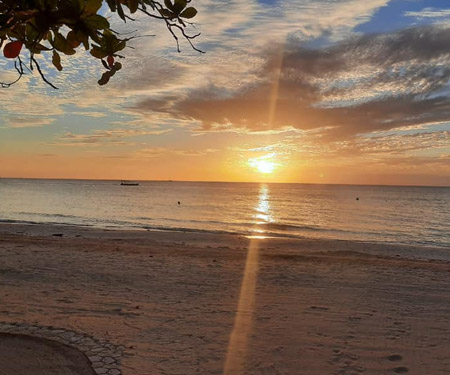 Jamaica CoCo Beach Pool Cam Resort Beach Vacation, Visit Caribbean Islands