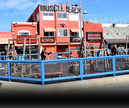 Muscle Beach Live Cam in Venice Beach
