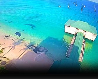 Pebbles Beach Live Cam in Barbados, Caribbean Islands, Resort Beach Vacation