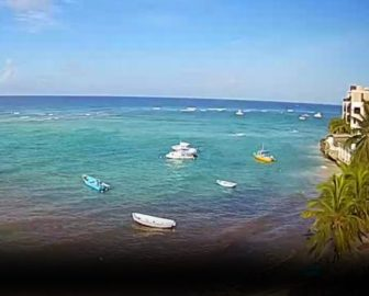 Yellow Bird Hotel Webcam in Barbados, Caribbean Islands, Resort Beach Vacation