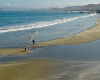 Cayucos Beach, CA Live Cam