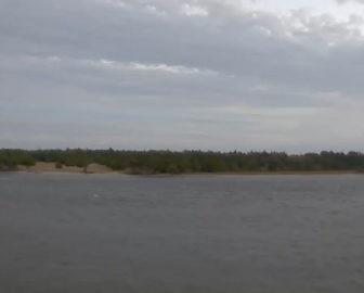 Duke Marine Lab Pilkey Center Webcam