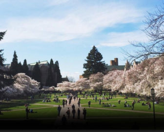 University of Washington - Quad Cam