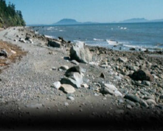 Birch Bay Getaway Clam Cam