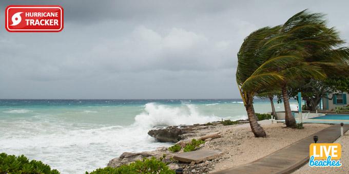 Live Hurricane Webcam Tracker