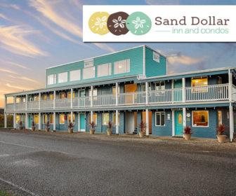 Sand Dollar Condos Live Cam Pacific Beach WA