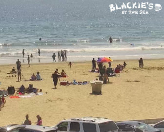 Blackie's By the Sea Live Beach Cam