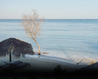 Cayo Arena Beach Webcam, Dominican Republic