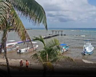 Condo Hotels Playa del Carmen Live Cam Mexico