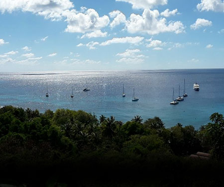 Firefly Hotel Mustique Live Webcam, St. Vincent & Grenadines