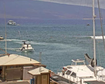 Lahaina Harbor & Breakwall Webcam in Maui Hawaii