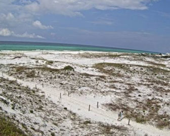 Grayton Beach Dunes Cam