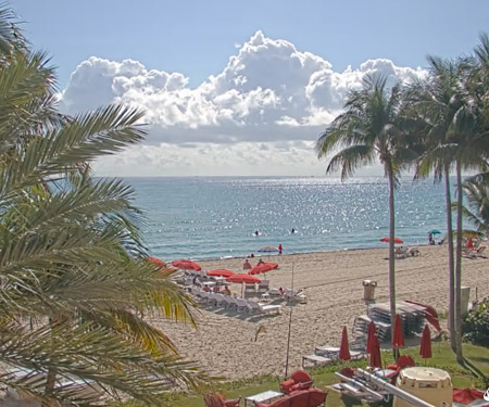 Sunny Isle Beach Webcam - Acqualina Resort & Spa Miami