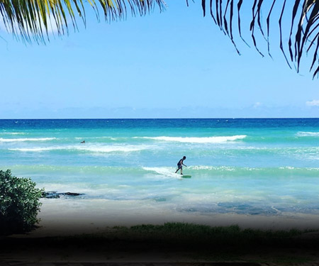 Surfer's Point Surf Cam in Barbados