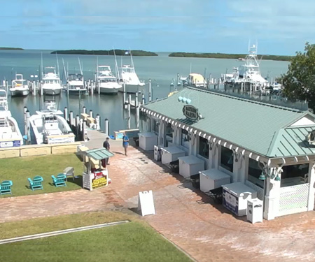 World Wide Sportsman Bayside Marina Live Cam, Florida Keys, Islamorada