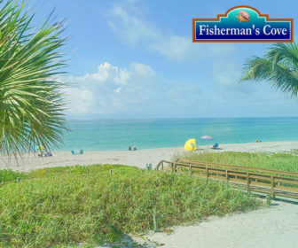 Fisherman's Cove Live Beach Cam
