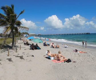Dania Beach, FL Webcam Highlights