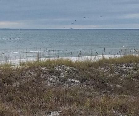 Orange Beach Gulf Shores Webcam, Alabama