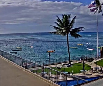 Live Elks Lodge Shaka Surf Webcam, Honolulu, Hawaii