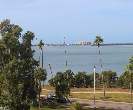 Fenway Hotel Webcam, Dunedin FL