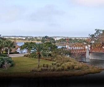 Isle of Collier Preserve Live Cam, Naples FL